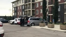 Police are investigating a suspicious death in SW Edmonton. (Sean McClune/CTV News Edmonton)