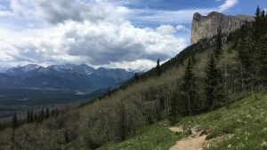 The hiking trail on Yamnuska in Alberta's Bow Valley Wildland Provincial Park, part of Kananaskis Country, is shown in June 2017. (THE CANADIAN PRESS/Colette Derworiz)