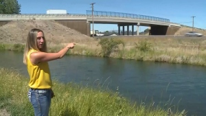 Woman rescues toddler who ran across highway
