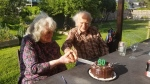 Harold and Kathy Steves celebrated their 60th wedding anniversary on June 30, 2020. (Twitter/Steves family)