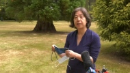 Dr. Dee Hoyano, medical health officer for Island Health, is shown: (CTV News)