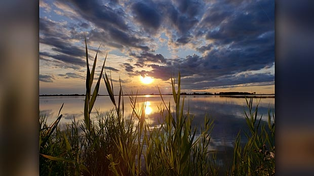 Delta Marsh. Photo by Leah Gudbjartson.