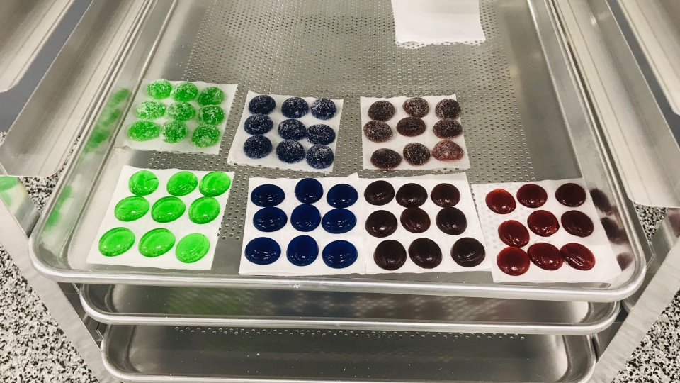 Dynaleo, located in Nisku, Alta., is producing gummies infused with THC and CBD. July 13, 2020. (David Ewasuk/CTV News Edmonton)