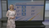 CTV Morning Live Weather July 14