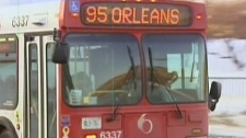 OC Transpo says high levels of absenteeism is not affecting bus service.