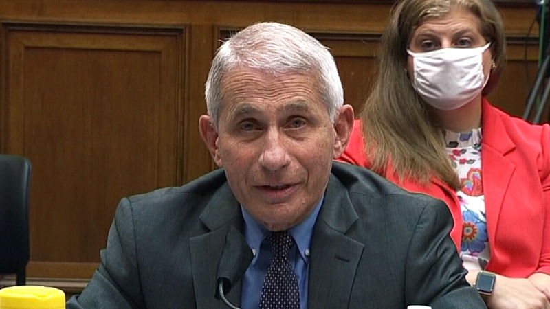 White House efforts to discredit Dr. Fauci