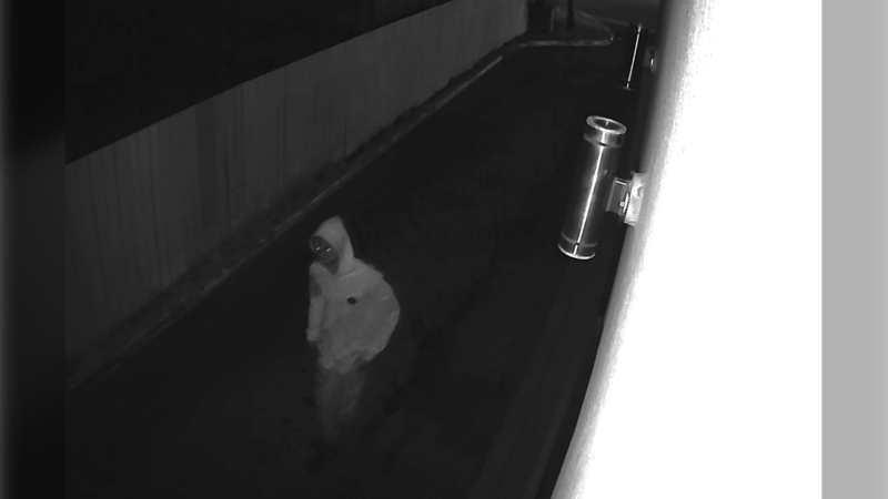 Surveillance still of the suspect in a  violentJuly 14, 2019 sexual assault in the southeast neighbourhood of Forest Heights (Calgary Police Service)