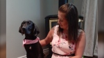 Emma Donovan with her new Great Dane puppy Willow. (Nate Vandermeer / CTV News Ottawa)