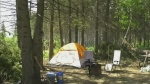 Campers at Duck Mountain Provincial Park took shelter after a storm brought down trees.
