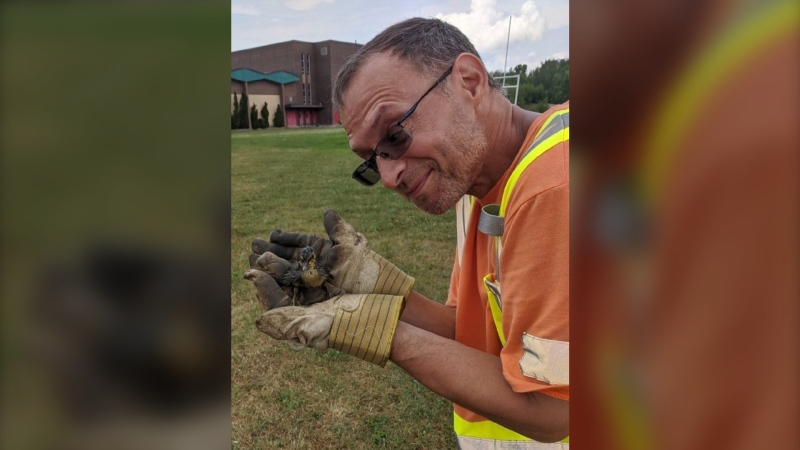Duckling rescued from storm drain in Sudbury. Jul. 10/20 (City of Greater Sudbury)
