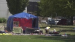 Park camping: Controversial amendment approved