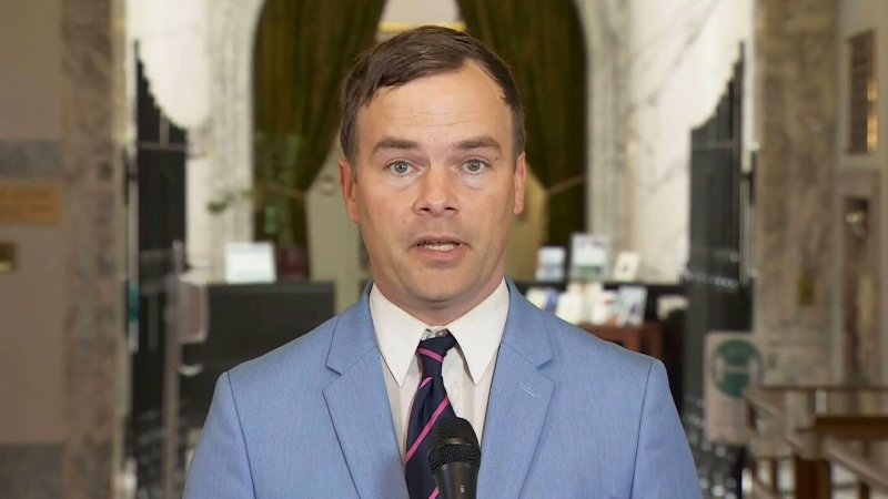 NDP MLA calls for Liberal to be ousted from caucus