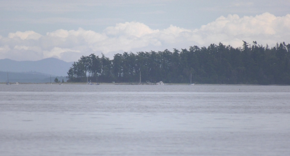 Sidney Spit is seen from the Town of Sidney waterfront: (CTV News)