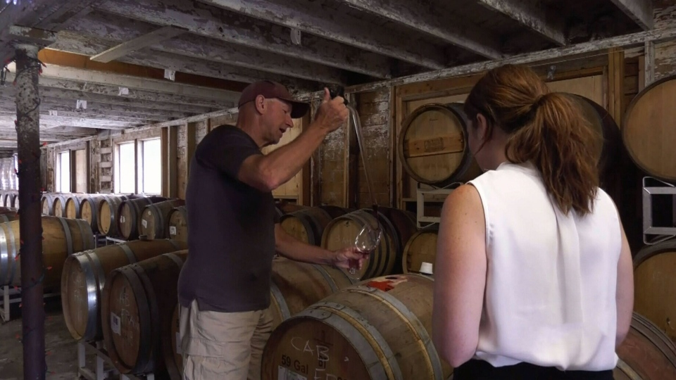 B.C. wineries back in business