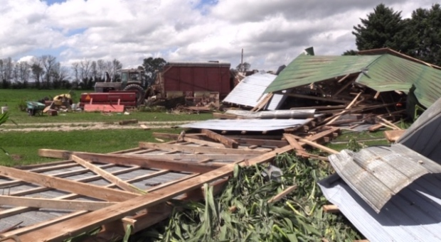 Storm damage in Huron County on July 20, 2020. (Scott Miller/CTV London)