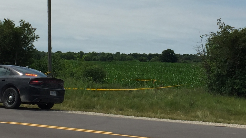 Police tape marks a section of a field as OPP investigate a sudden death north of Strathroy, Ont. on Tuesday, July 21, 2020. (Bryan Bicknell / CTV News)