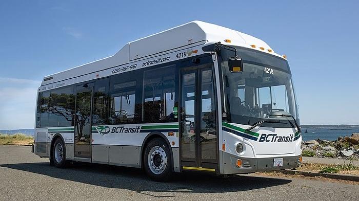 cng bc transit