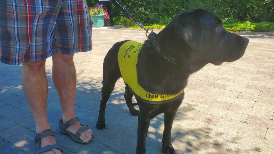 CNIB Saskatchewan Guide Dogs