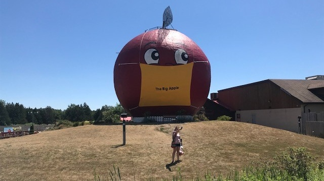 The Big Apple wearing a mask