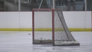 An ice hockey net is seen in this undated file photo.