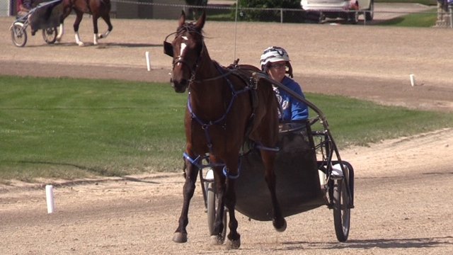 Horse racing in Clinton, Ont.