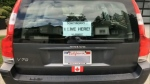 U.S. licence plates