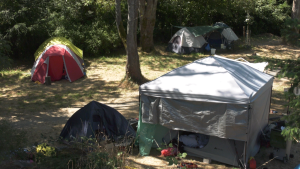 Tents are seen at a growing encampment at Cecelia Ravine Park: July 29, 2020 (CTV News)