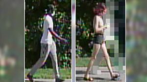Ottawa Police want to identify two persons of interest in connection to Carsons Road homicide on Monday. (Photo courtesy: Ottawa Police Service)