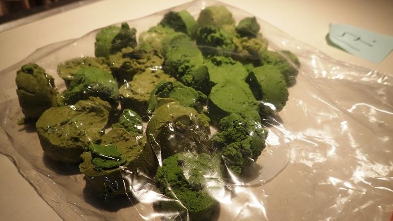 Green- fentanyl seizure VPD