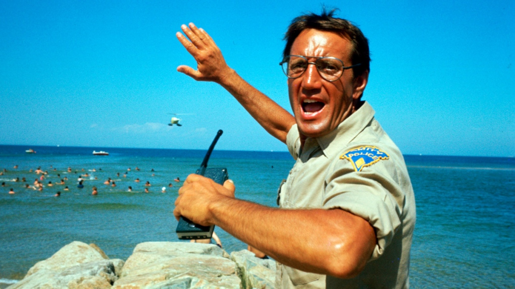 Roy Scheider in a scene from 'Jaws'
