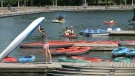 At Dow's Lake Rentals, business could not be better, as residents look for fun activities close to home. (Katie Griffin / CTV News Ottawa)