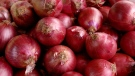 The federal government is warning of an outbreak of salmonella that is linked to red onions imported from the U.S. (iStock)