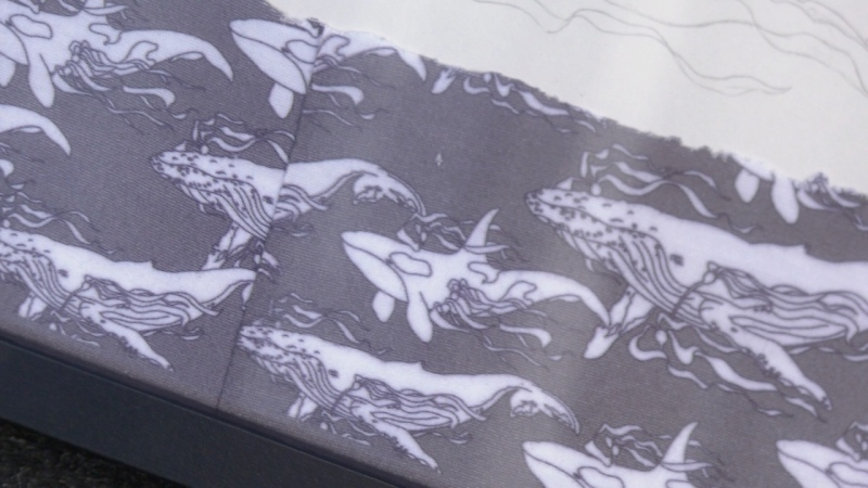 """Claire MacKinnon-Nelson volunteered her art skills to sketch out the orca and humpback whales that adorn the """"face-buffs"""" being used by passengers to social distance on the whale watching vessels."""