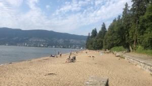 The group who tried to organize a dance party on Vancouver's Third Beach Friday night were the only ones who turned out. (CTV)