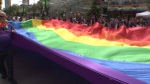 Pride festival goes virtual during pandemic