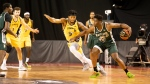 Rattlers lose 88-66 to the Edmonton Stingers on Aug. 1, 2020. Photo by CEBL
