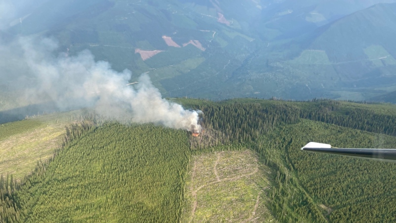 Ground crews and air support are responding to four fires that are visible from the Revelstoke area, all of which are located either on or near Mount Begbie. (BC Wildfire Service)