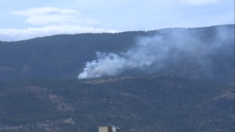 Wildfire crews are working to put out a fire that sparked on the shore above Okanagan Lake Sunday afternoon. (Castanet.net)