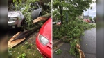 Photos taken by Charlenne Asselstine, shortly after a storm blew through Camden East, Ont. Sunday, Aug. 2, 2020.