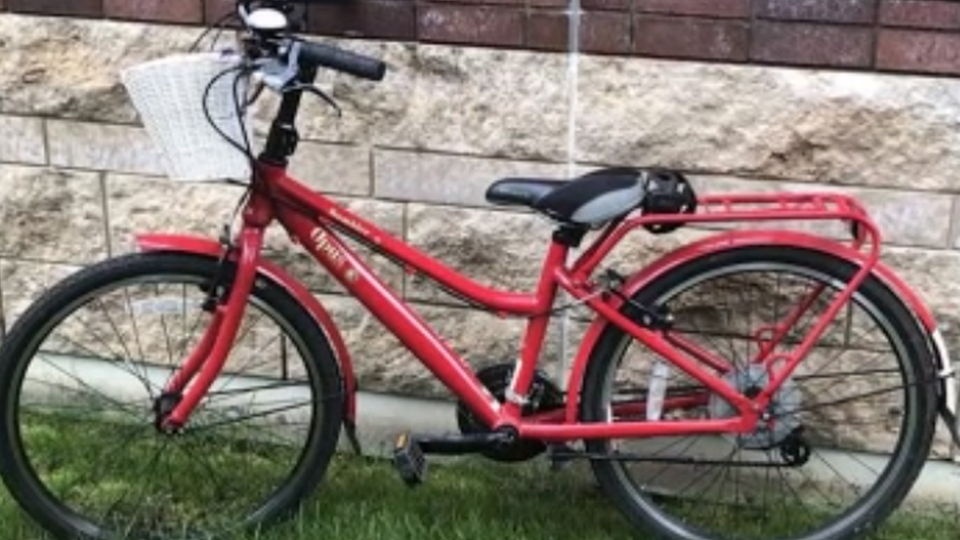 This specially modified bike was stolen from an Edmonton garage on Aug. 1, 2020.