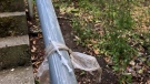 Used needle found taped to park railing