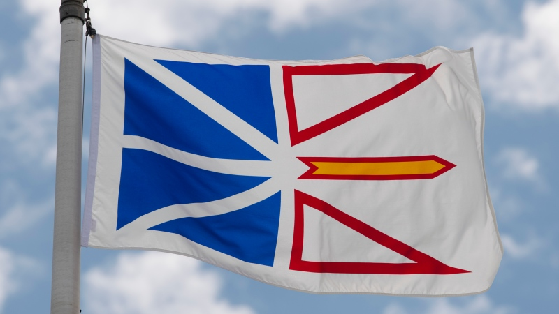Newfoundland and Labrador's provincial flag flies on a flag pole in Ottawa, Friday July 3, 2020. (THE CANADIAN PRESS/Adrian Wyld)