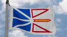 Newfoundland and Labrador's provincial flag flies on a flag pole in Ottawa, Friday July 3, 2020. (Adrian Wyld / THE CANADIAN PRESS)