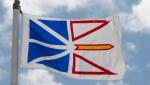 Newfoundland and Labrador's provincial flag flies on a flag pole in Ottawa, Friday July 3, 2020. (Adrian Wyld / THE CANADIAN PRESS)