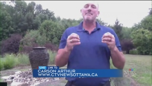 Gardening tips from Carson Arthur (Part 1)