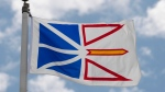 Newfoundland and Labrador's provincial flag flies on a flag pole in Ottawa, Friday July 3, 2020. A challenge of Newfoundland and Labrador's COVID-19 travel ban is expected to be heard before the province's supreme court beginning today. THE CANADIAN PRESS/Adrian Wyld