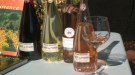 Wine and spirits expert shares the perfect wine to serve on your patio this summer