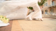 Bride's photoshoot interrupted by Beirut blast