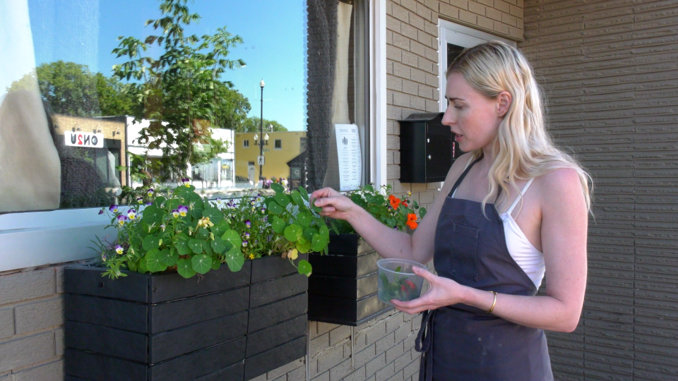 Christie Peters, chef and owner of Primal, picks herbs outside her restaurant on 20th Street West (Nicole Di Donato/CTV Saskatoon)