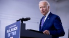 Who will Biden pick as his running mate?
